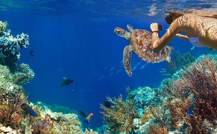 multicountry-s-itinerary-adventure-galapagos-wildlife-treasures-of-peru.jpg