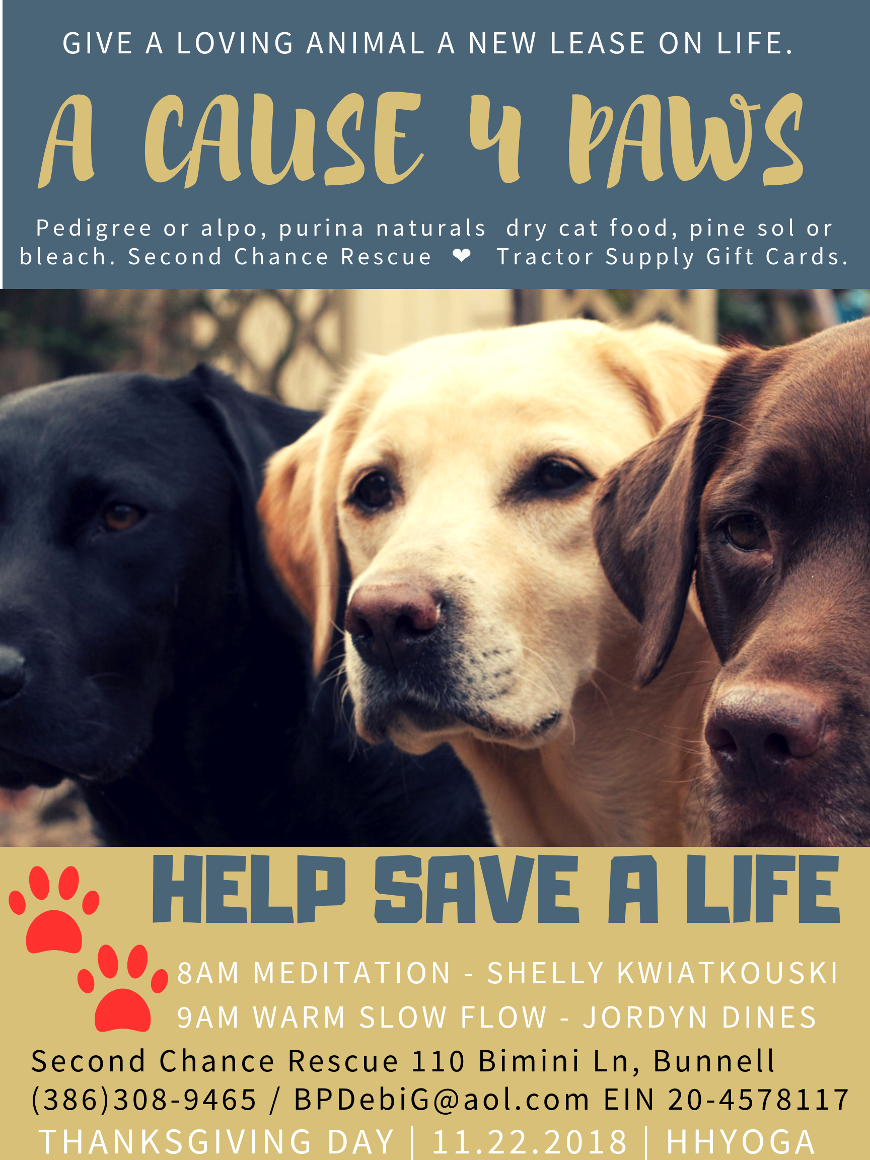 Dogs-rescue-donation-shelly-kwiatkouski.png