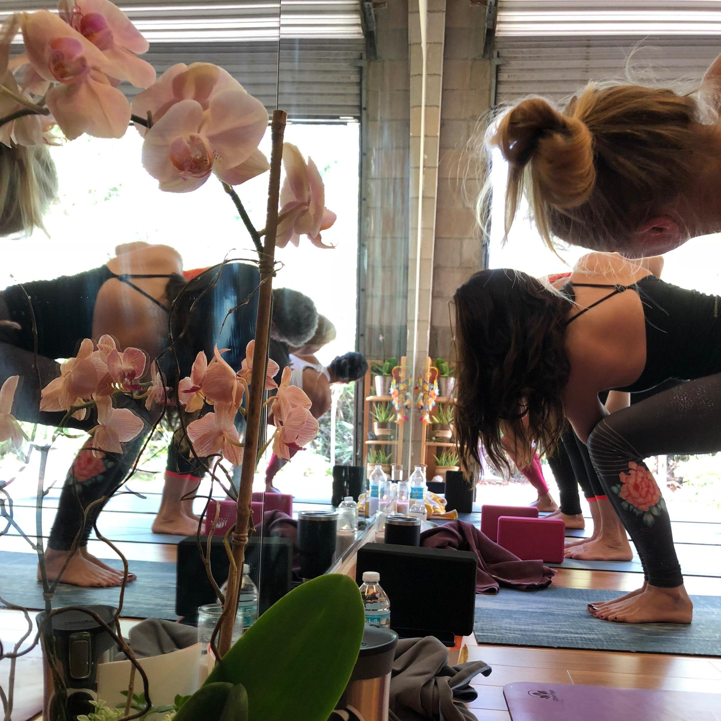 master-yoga-teacher-shelly-kwiatkouski.jpg