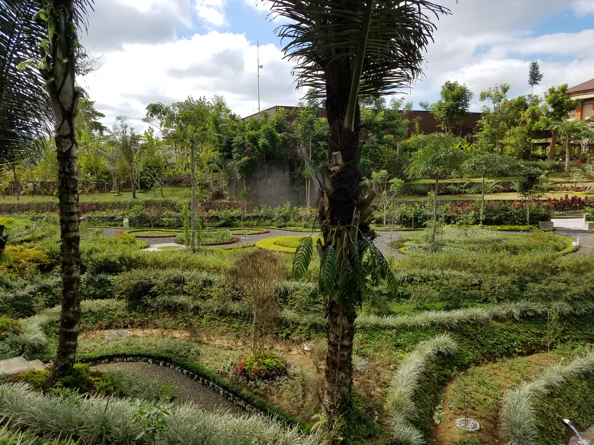 There's no shortage of relaxing things to do at Padma. We took some time to explore the garden that had a variety of plants and flowers. The resort grows a lot of their own food so you will see a variety of spices in the garden.