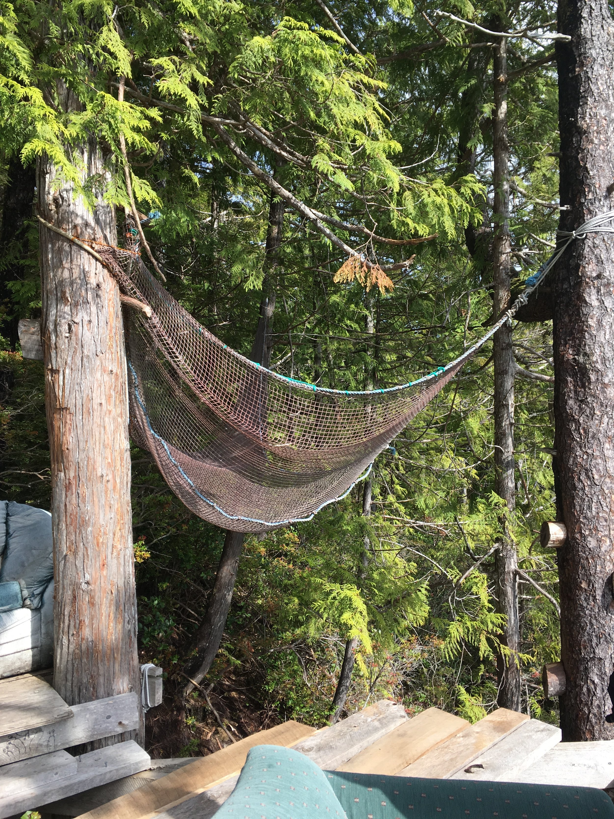 'The hammock'