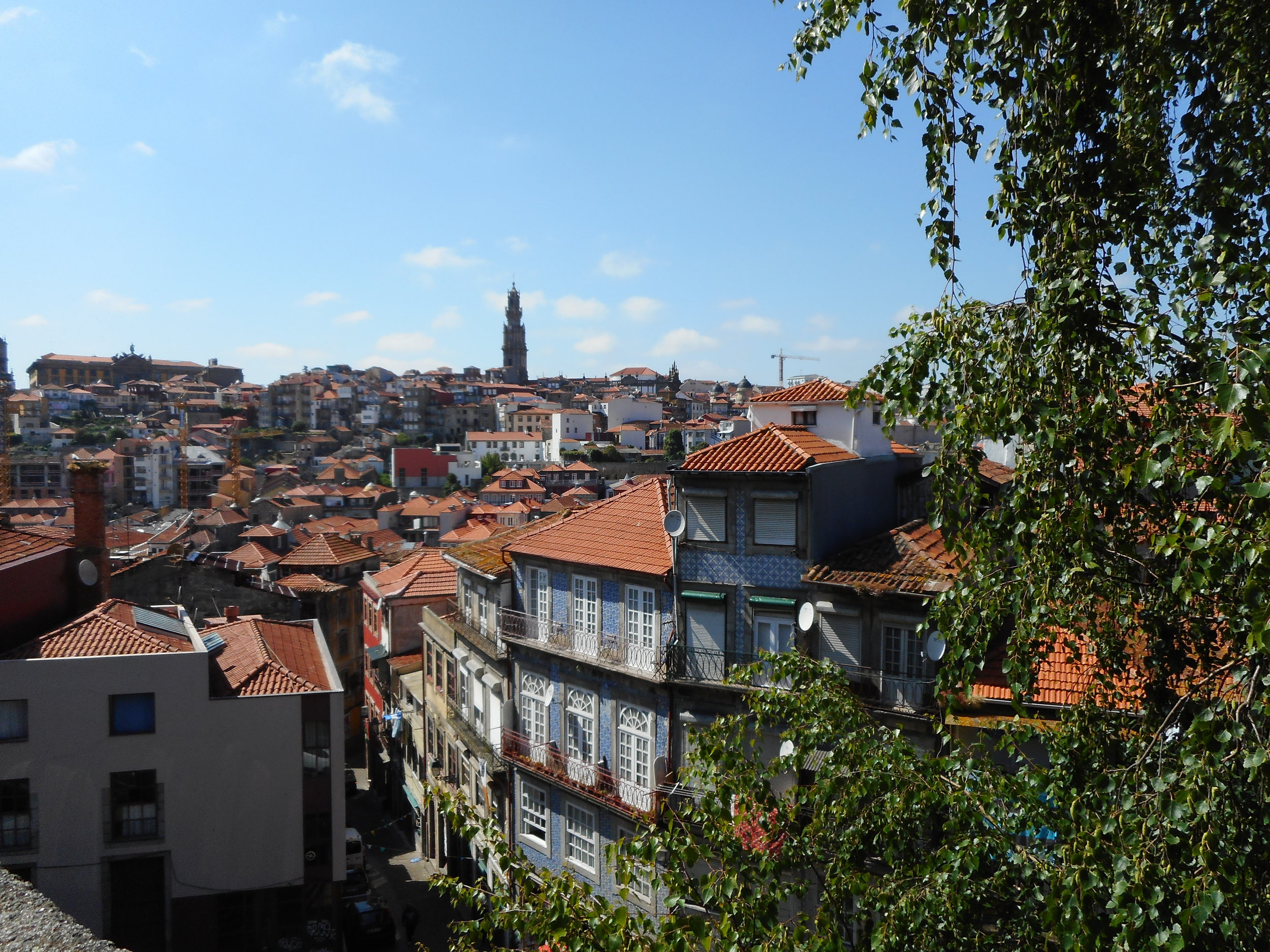The view from the Porto Cathedral