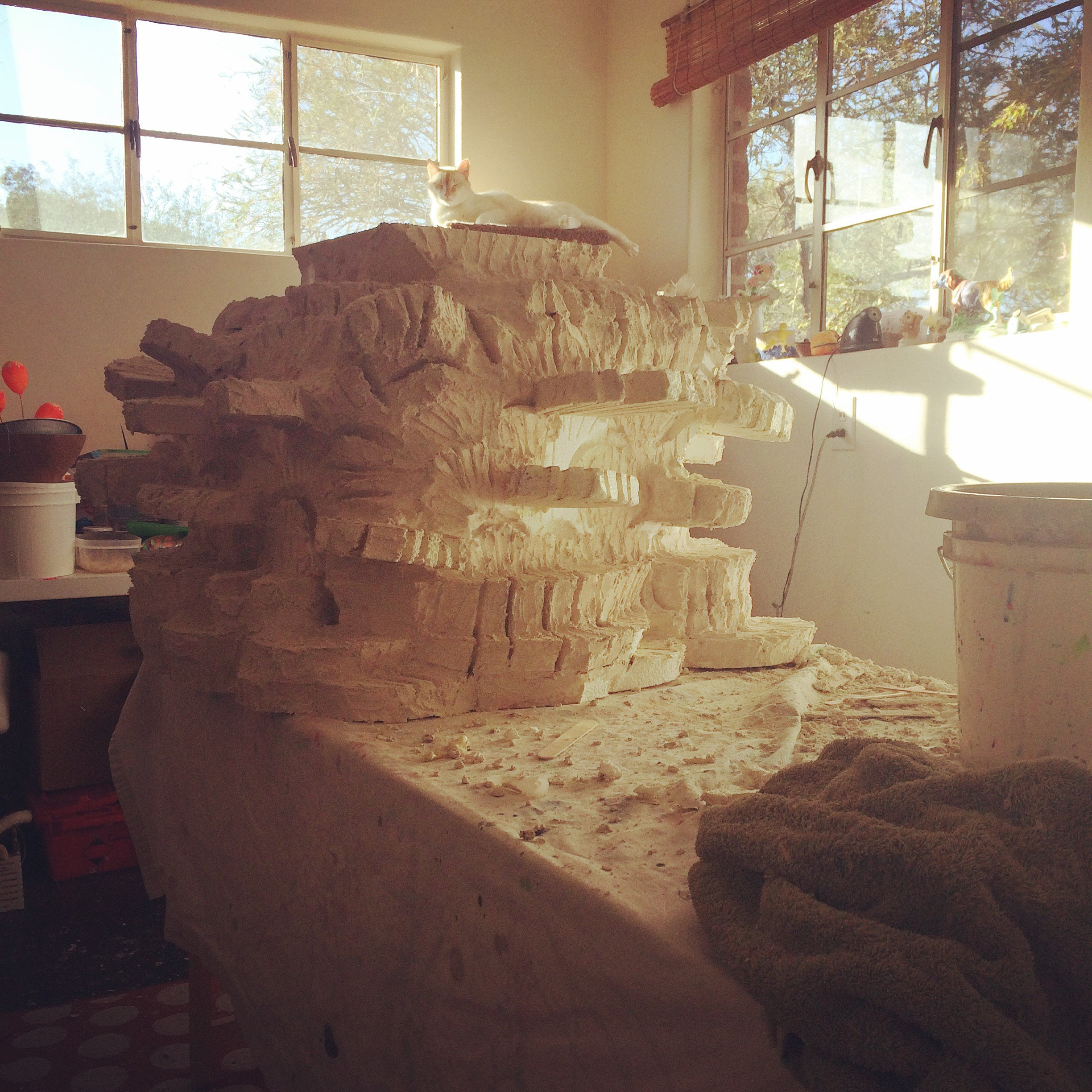 Part of a super coral sculpture in the studio with Moonpie the cat.