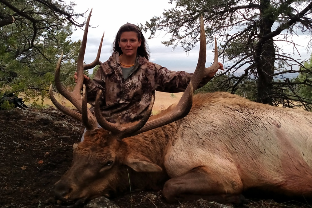 A beautiful New Mexico elk, filling the freezer and making memories to last a lifetime