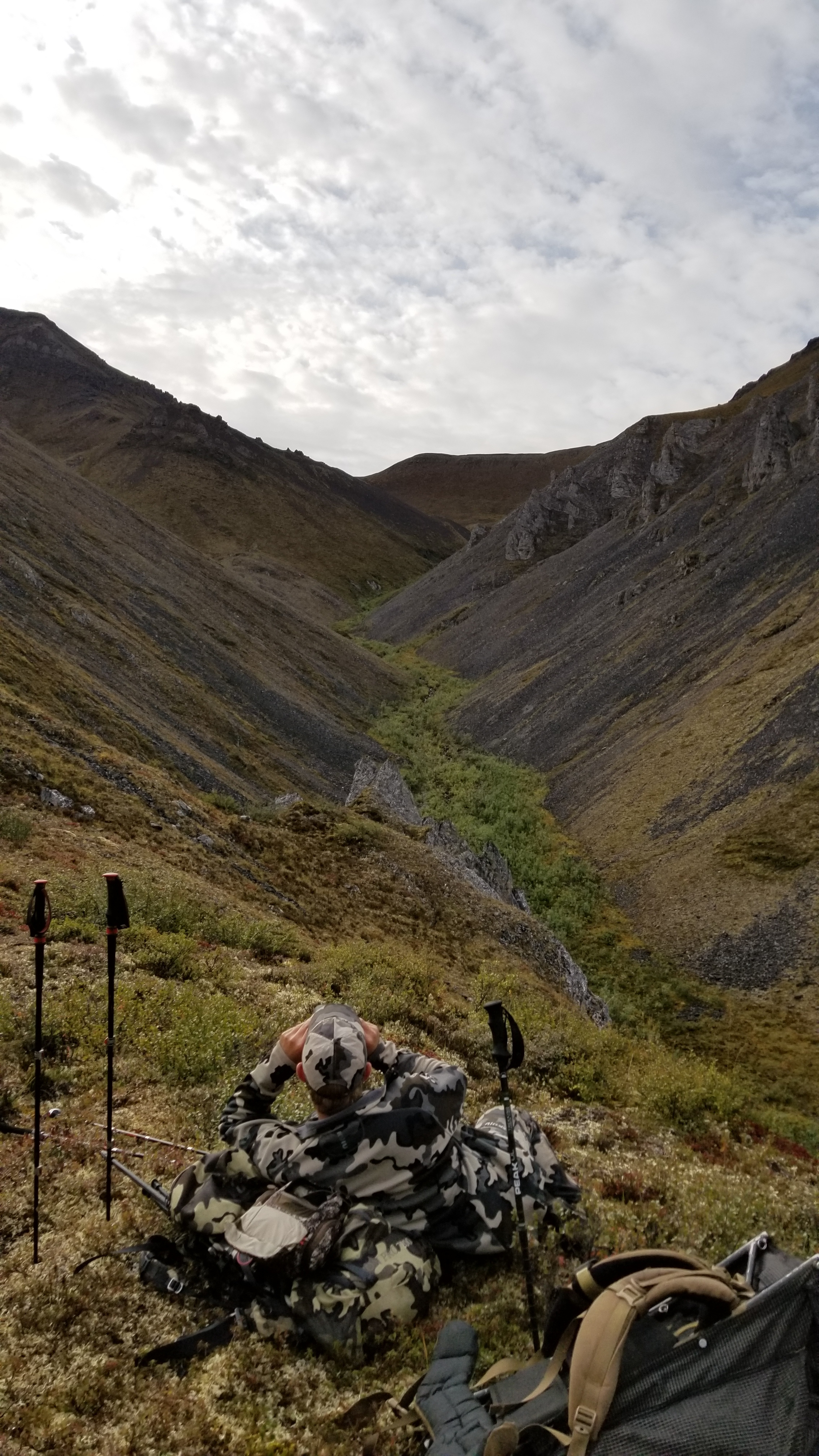 Glassing for Dall Sheep in the Brooks Range