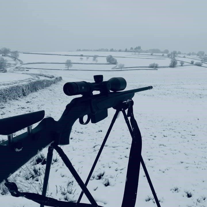 4StableStick in winter.jpg