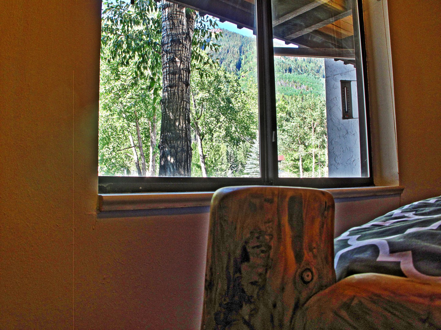 bedroomwindow (Large).jpg