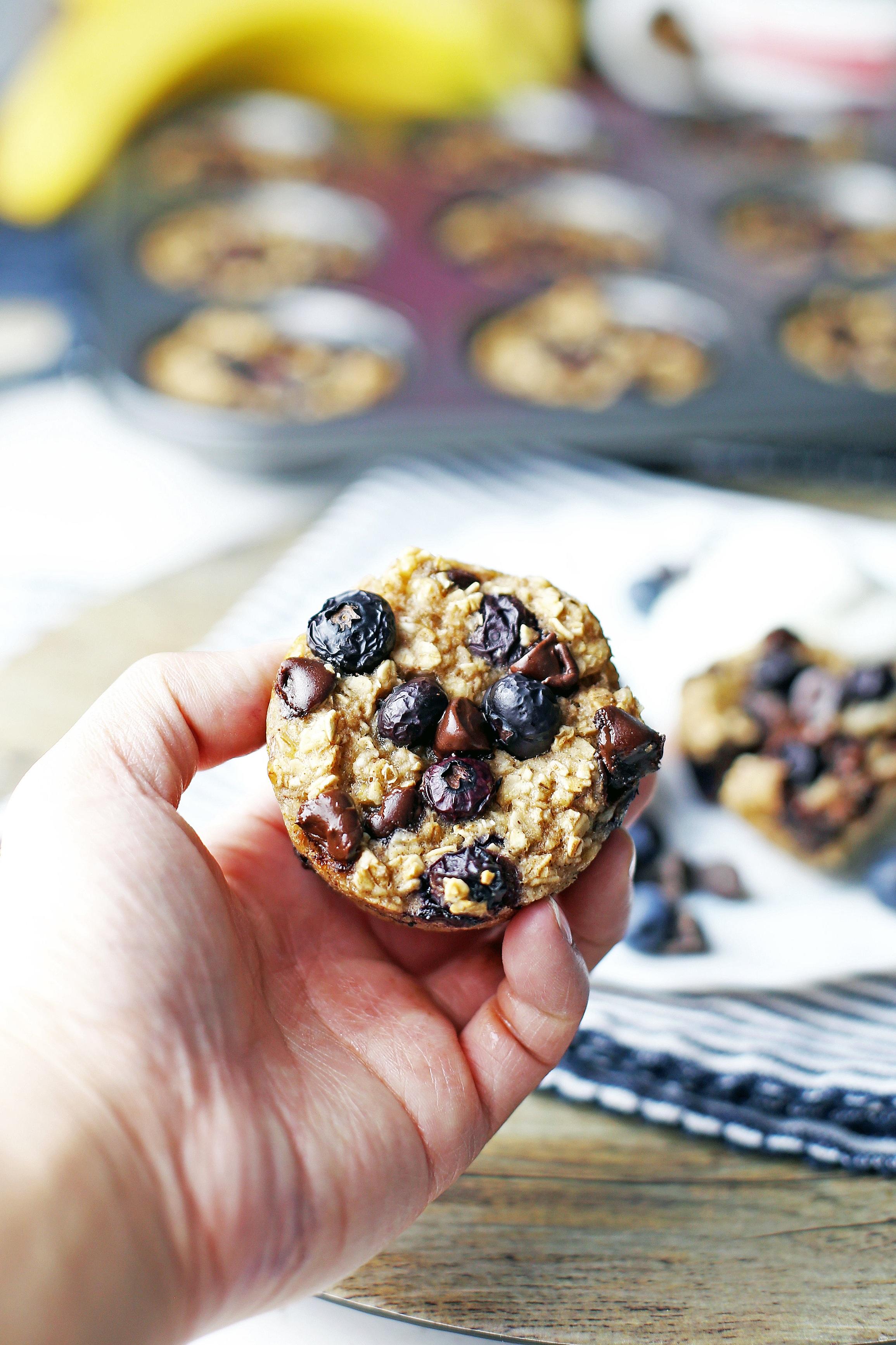 blueberry-chocolate-oatmeal-cups(v10).jpg