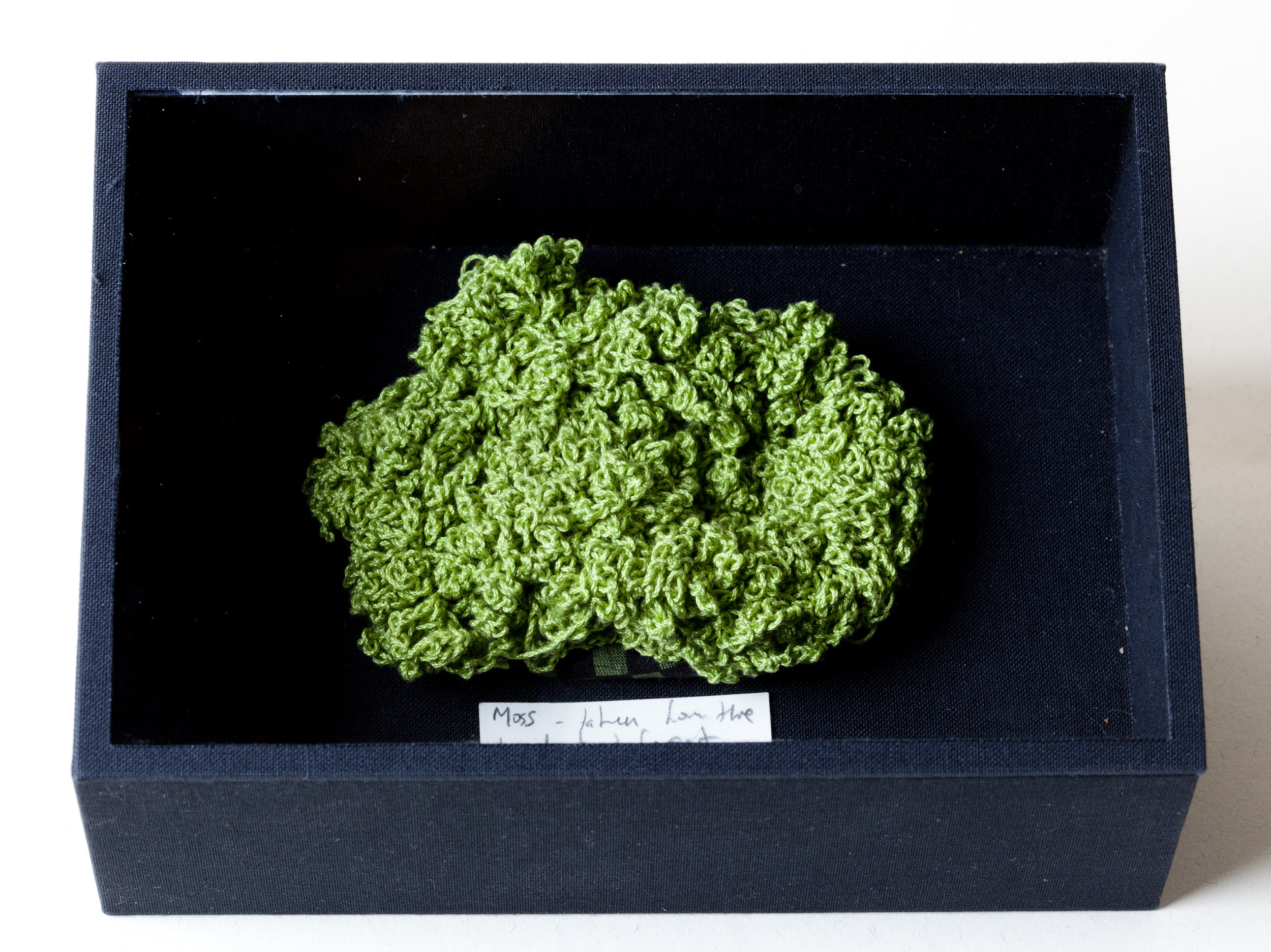 071M-SAMPLE-Moss-.jpg