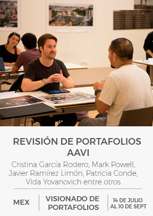 Portfolio Review AAVI.png