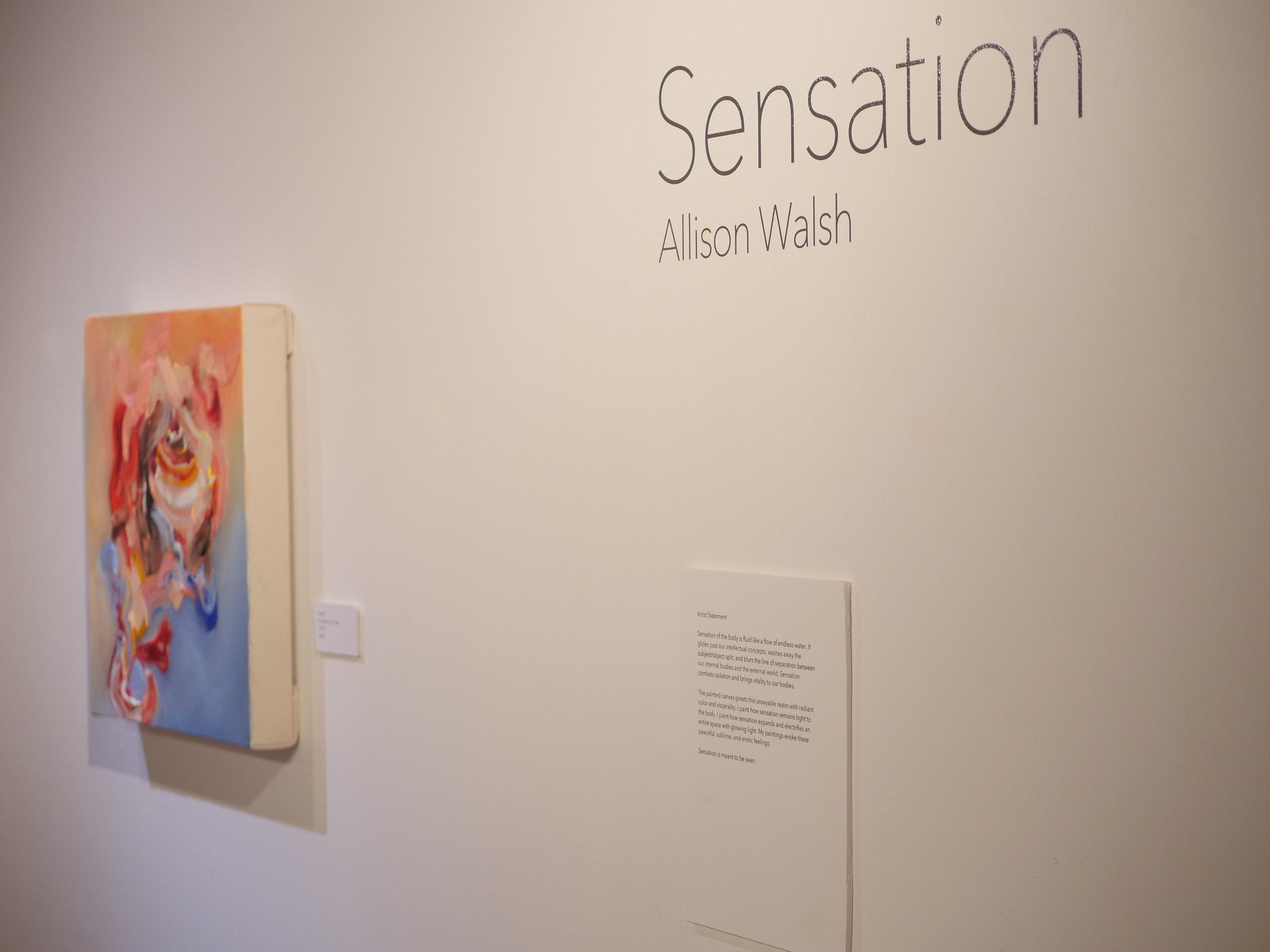 """Sensation"" at Prairie Center of the Arts"