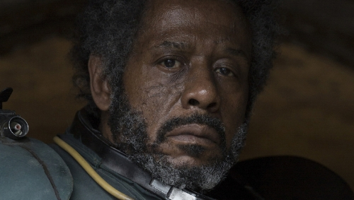 """Did I really need to be bald in some scenes and super hairy in other scenes, guys? I'm in like a sixth of this."" - Forest Whitaker"