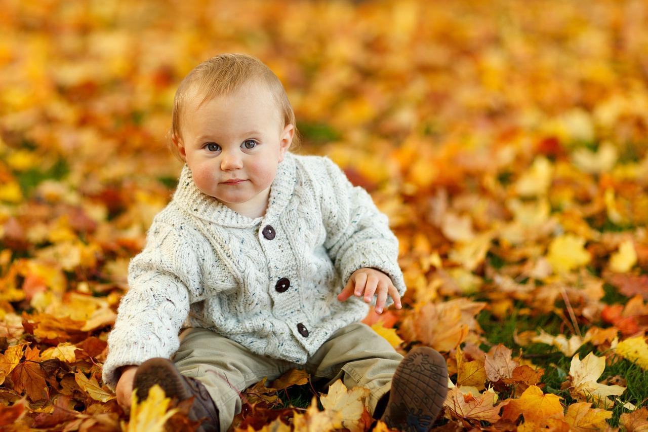 autumn-275920_1280.jpg