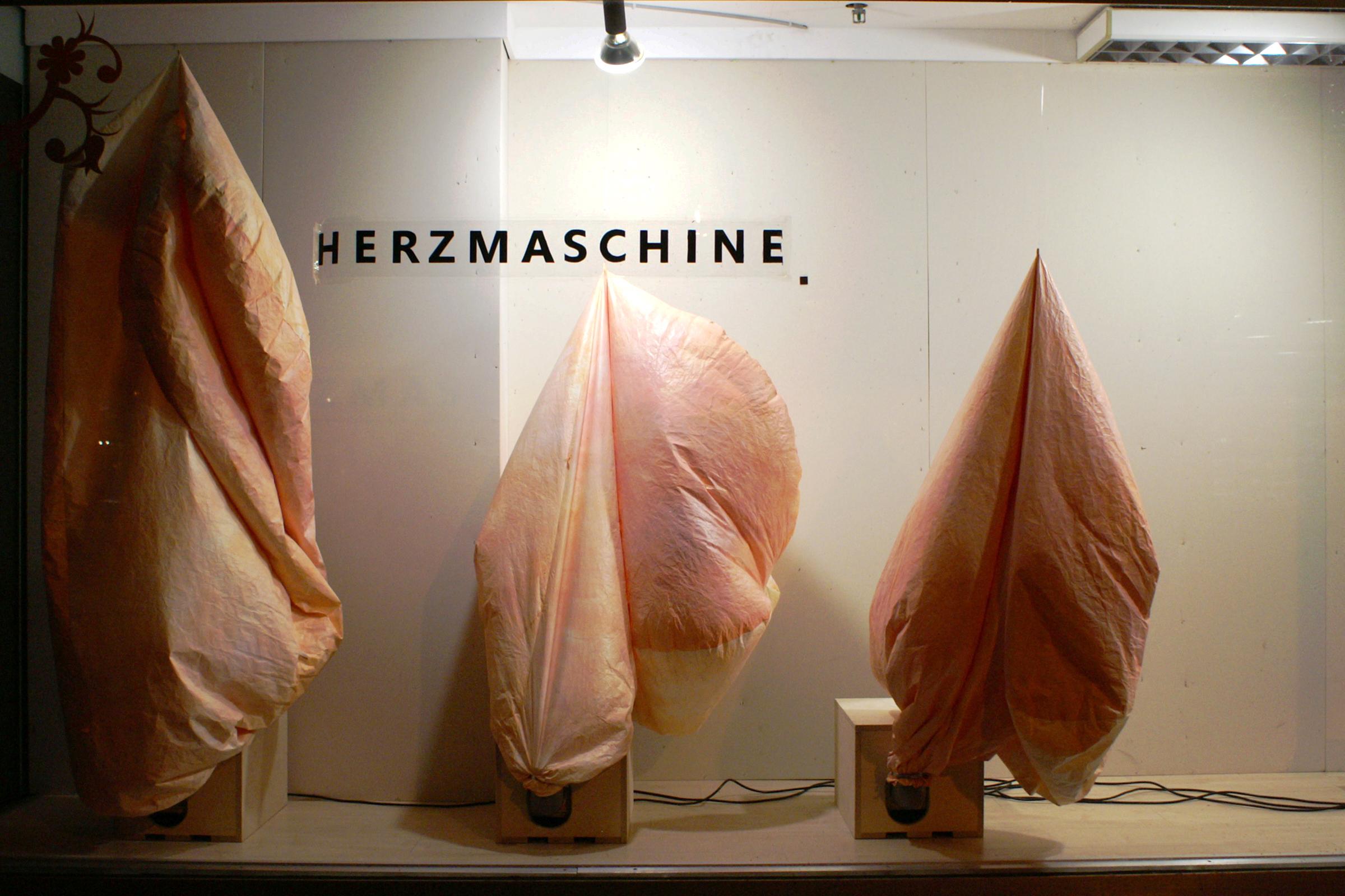 Herzmaschine 2.jpg