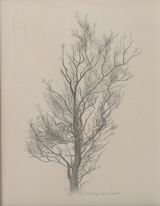 High Riggs winter tree 145mm x 190mm