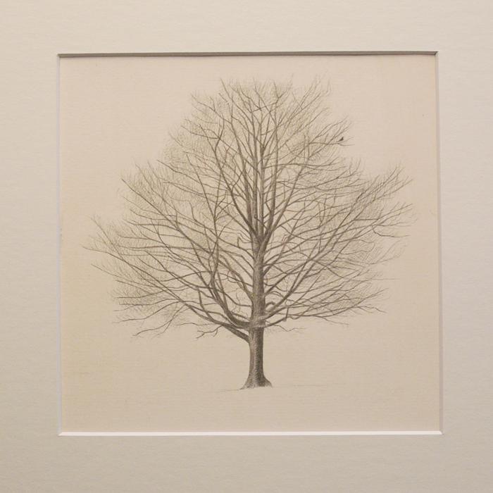 Winter tree with bird 150mm x 150mm