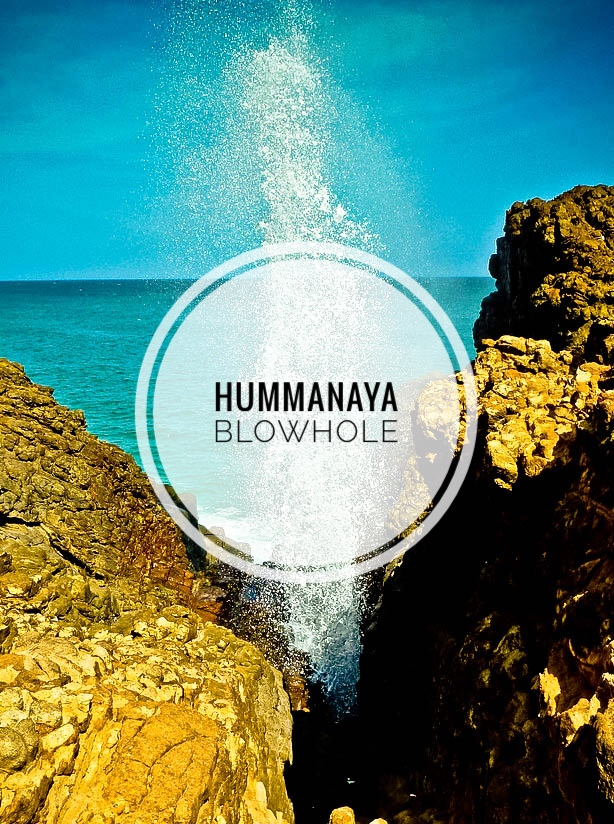 HUMMANAYA BLOWHOLE