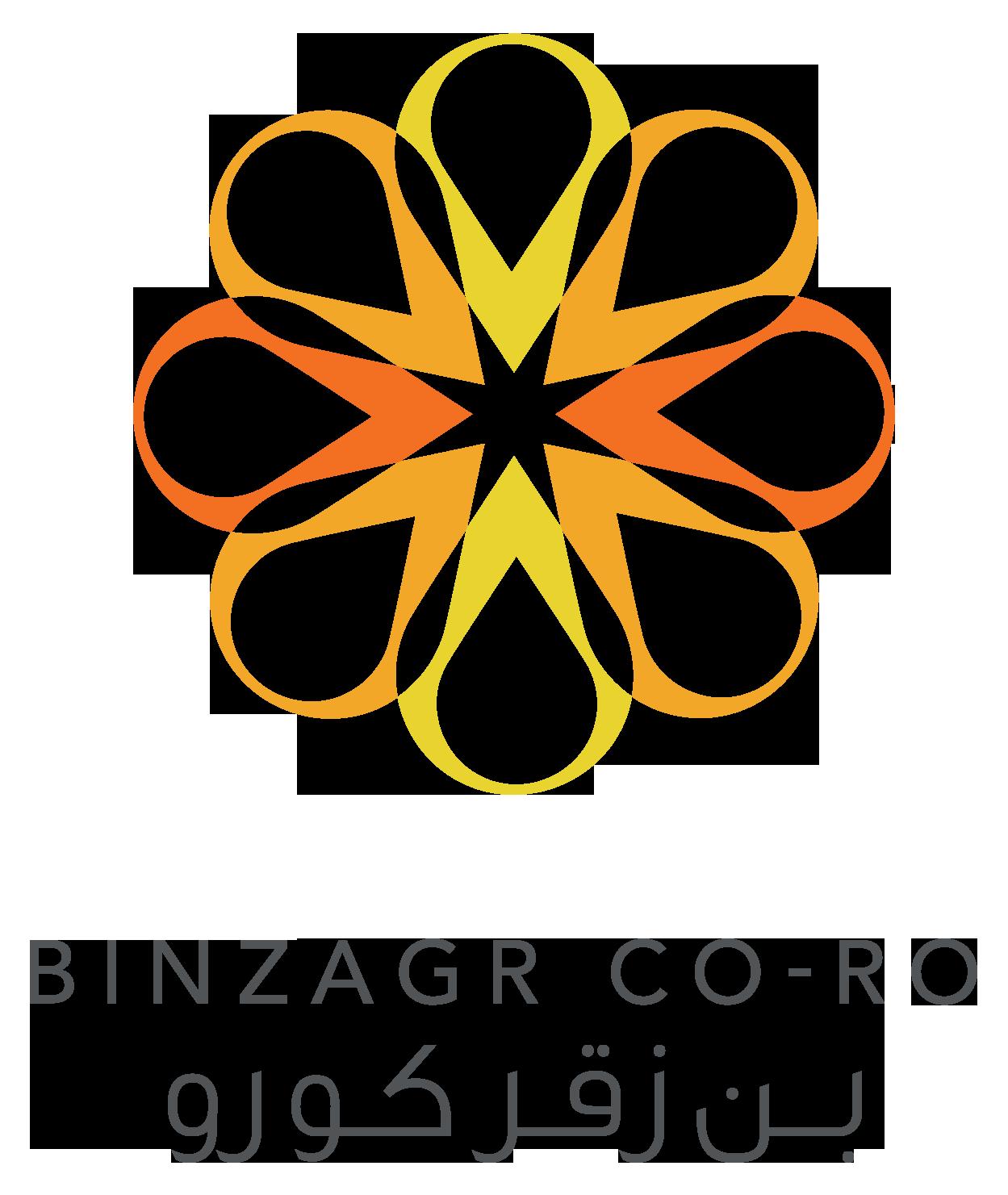 BINZAGR CO-RO max.png