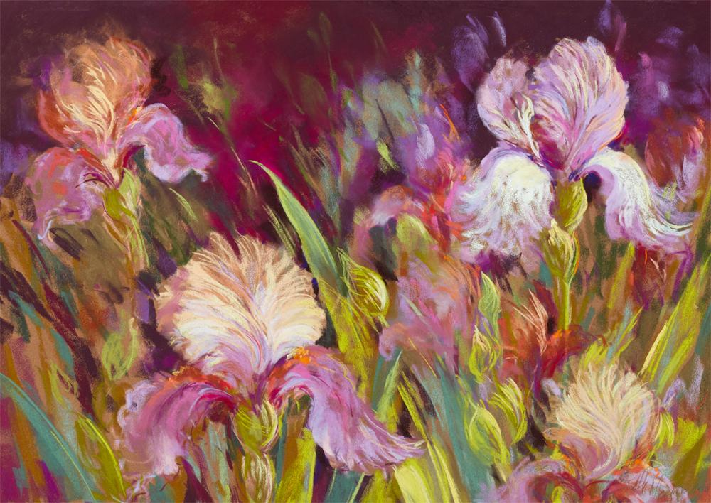 Irises All Day
