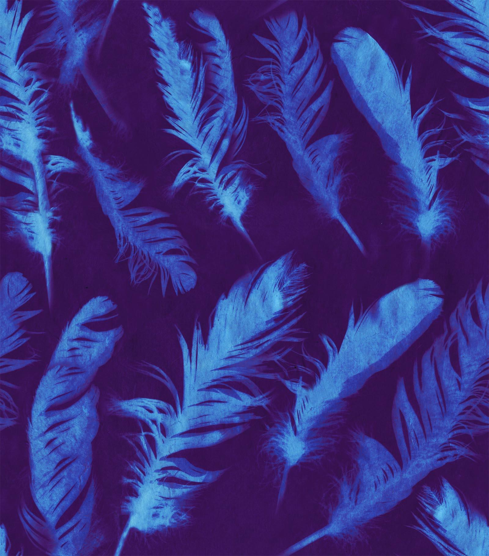 N2422 Feather Blue.jpg