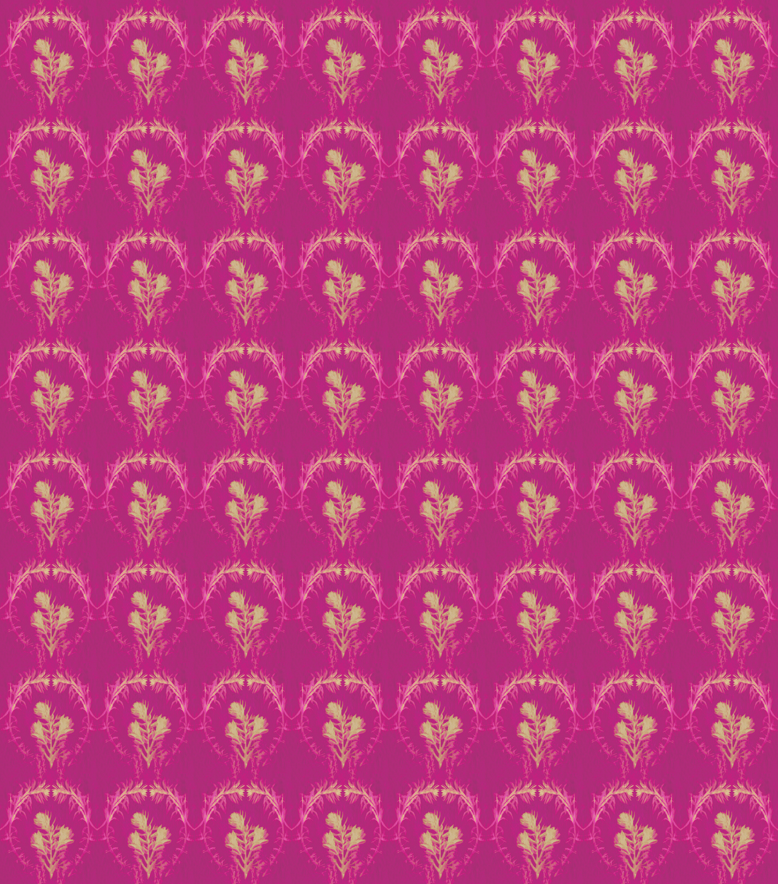 N2461 Verbena Raspberry.jpg