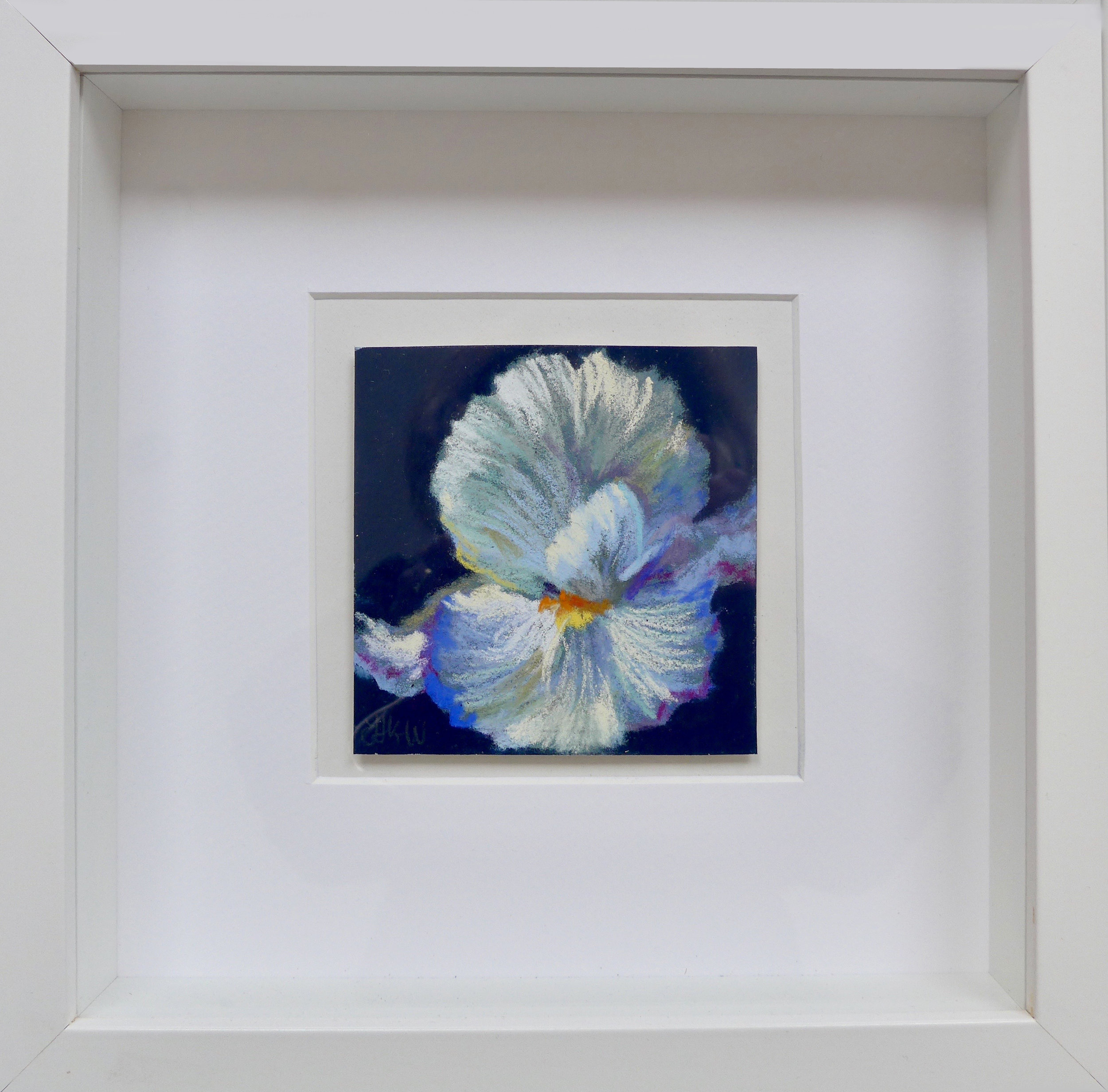 MINI Iris ii framed.jpg