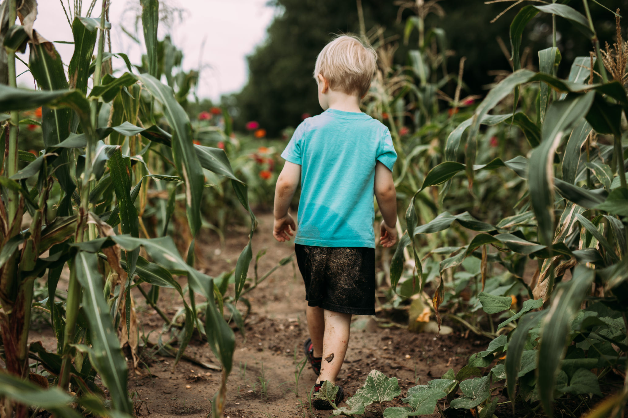 A watchful eye is the key to gardening | Rural Life Photography | Family Photojournalism