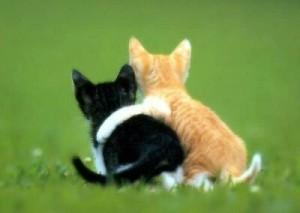 Friendship-300x213.jpg