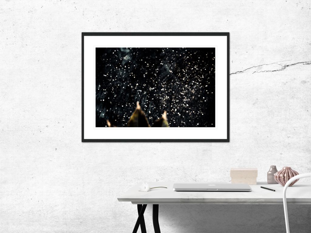 〆Constellation - Limited edition photography print by Juanjo Keena〆 AARHUSMAKERS