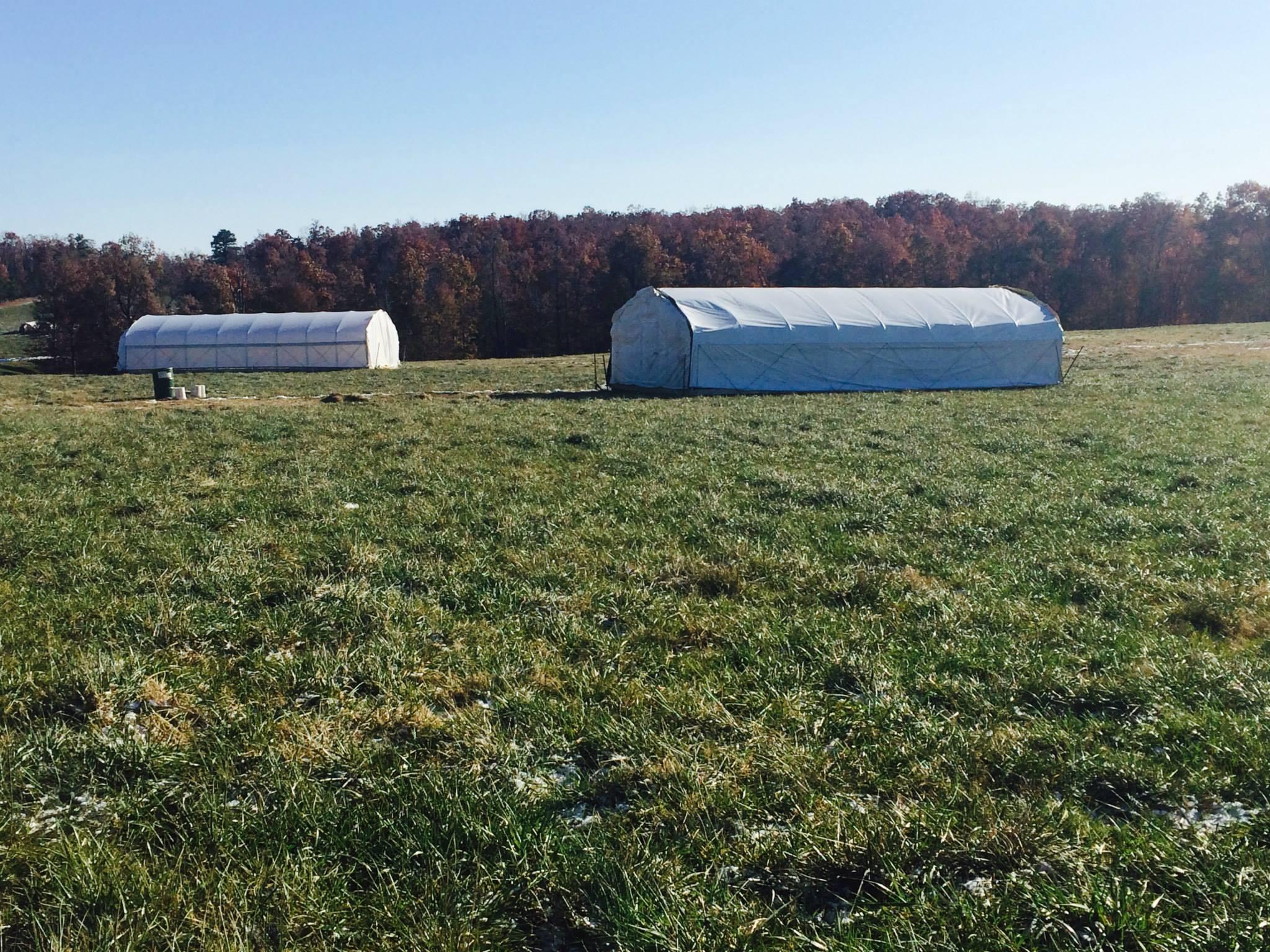 Prairie Schooners (20 x 40) at Falling Sky Farms near Conway, Arkansas