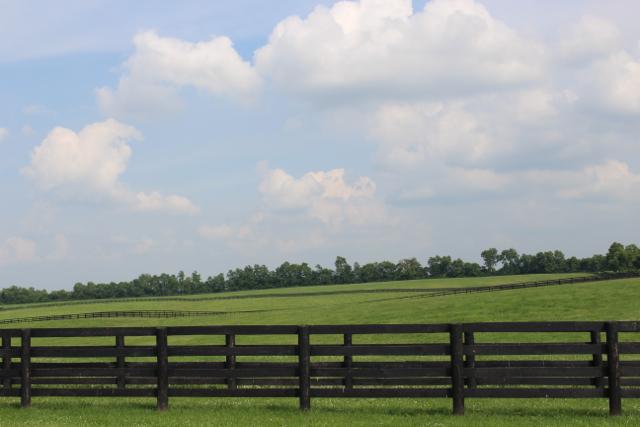 Six-Winters-Farm-08.jpg