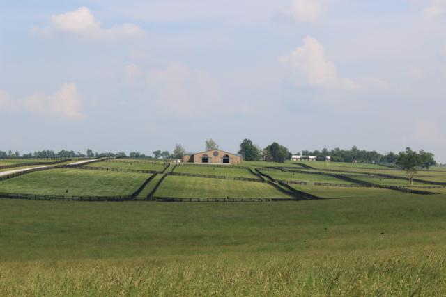 Six-Winters-Farm-20.jpg