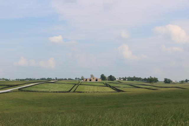 Six-Winters-Farm-22.jpg