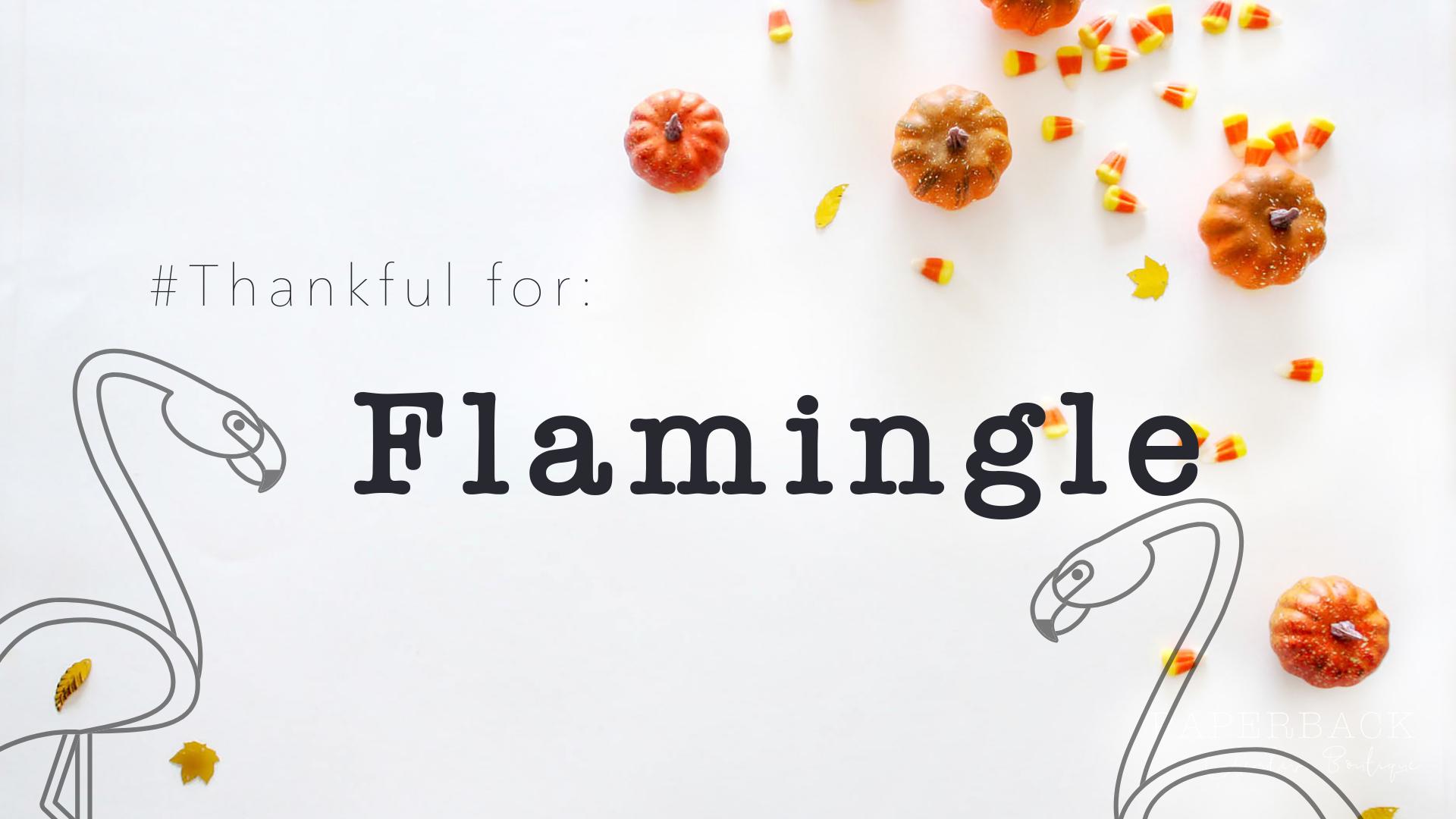 Thanksgiving Flamingle.png