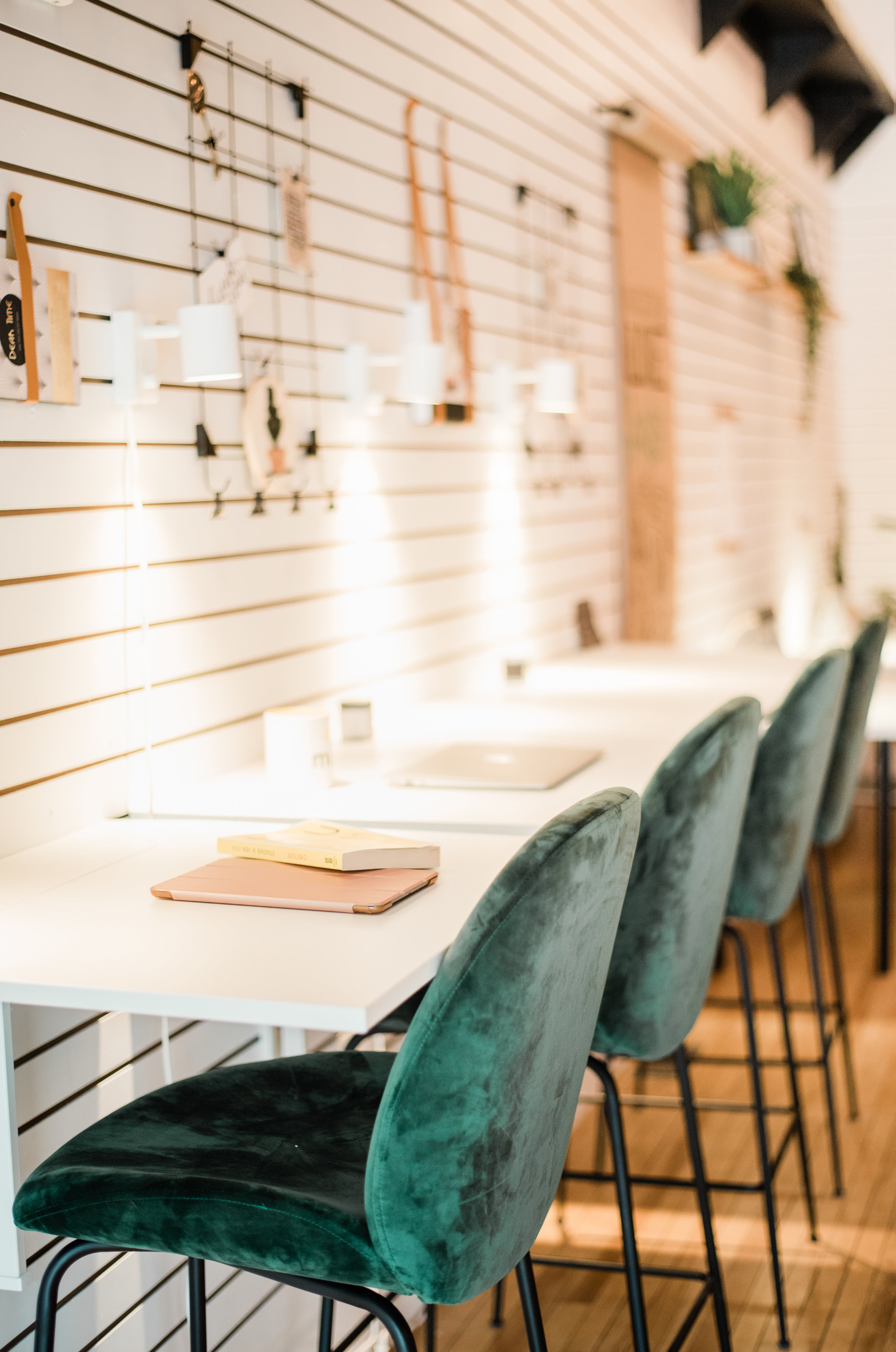 DROP-IN COMMUNAL DAY PASS [$15.00/day]   - Access to communal work space (laptop bar or communal table) - Wifi and printing privileges - Access to exclusive business member events - Coffee bar!
