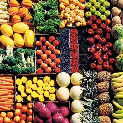Vegan nutrition guide article science guides healthy plant based