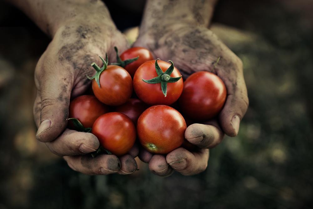 should we eat organic food vegan nutrition vegan nutritionist
