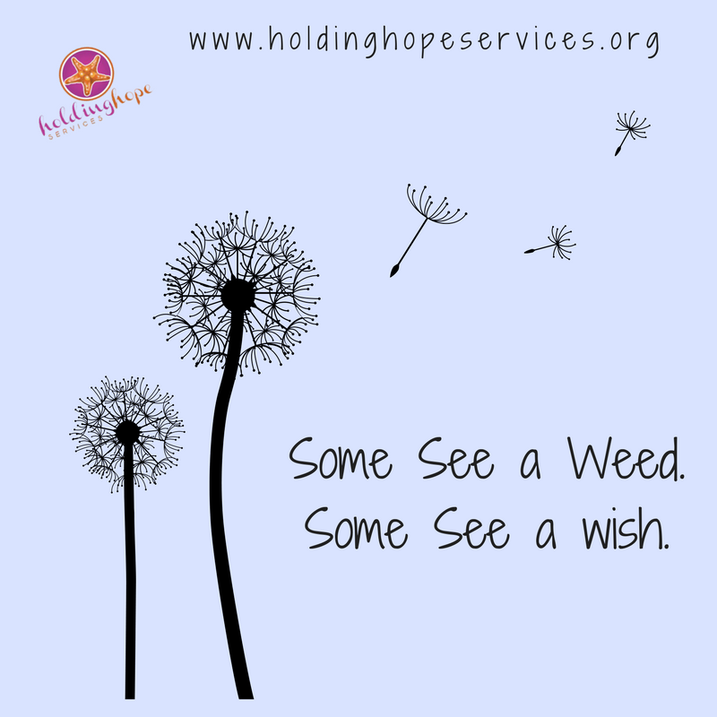 Some See a Weed.Some See a wish..png