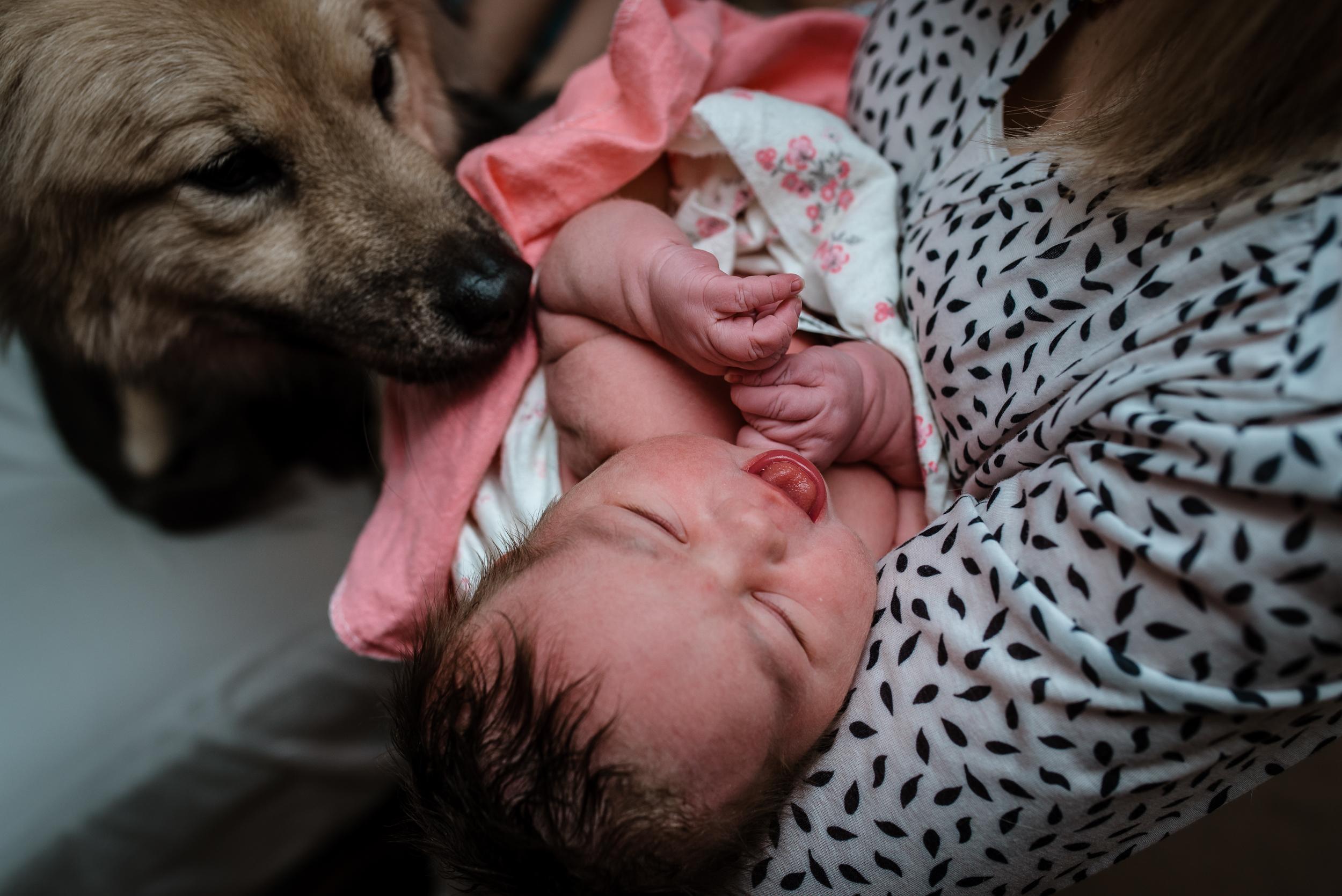 Best Birth Photography Minneapolis St. Paul Minnesota Meredith Westin-April 21, 2018-043030.jpg