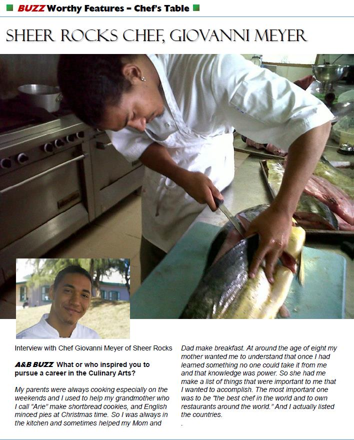 A&B Buzz Magazine 2011 Feature