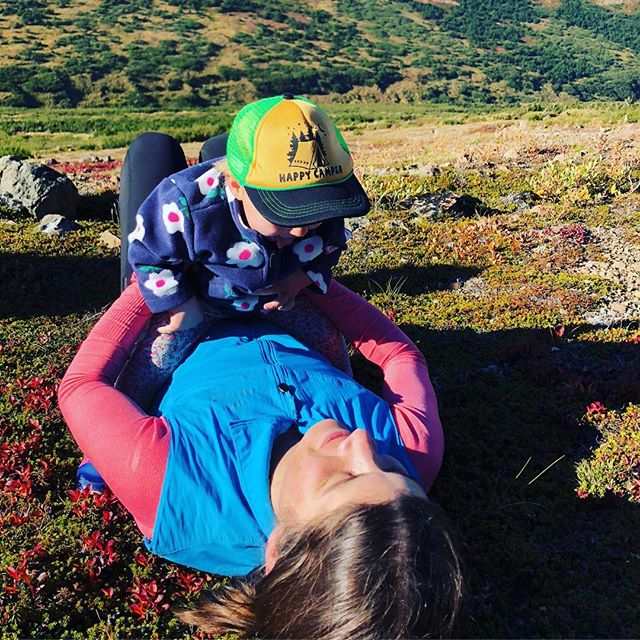 Sunny fall days in the tundra are the best days. #tundra #alaska #chugachstatepark