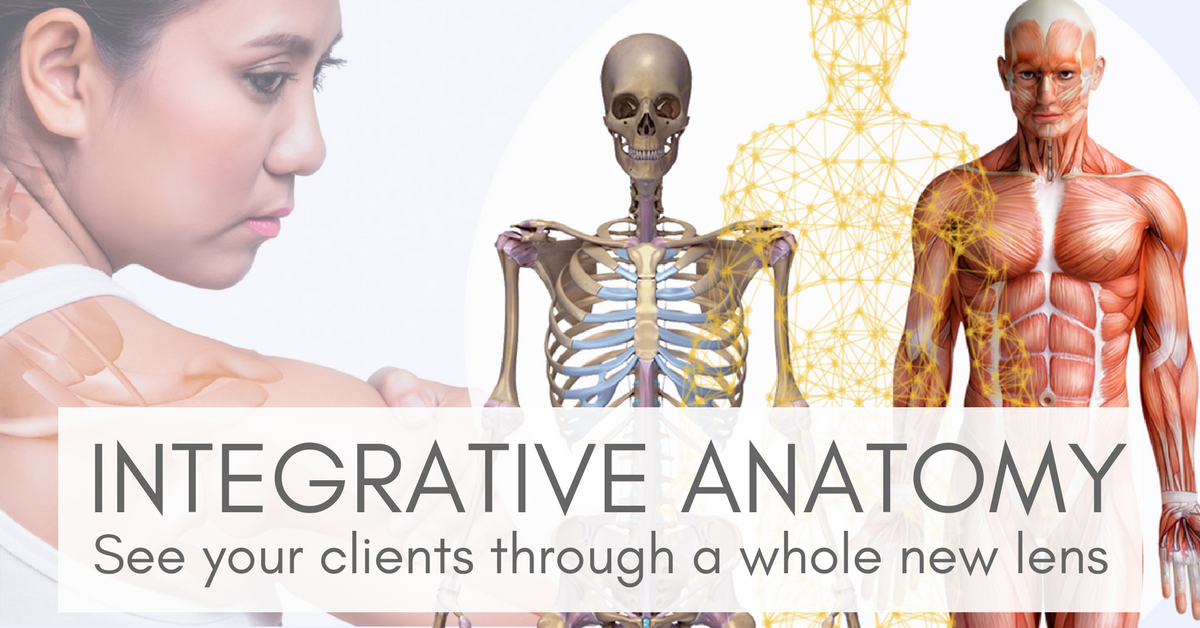 INTEGRATIVE ANATOMY FB event cover.png