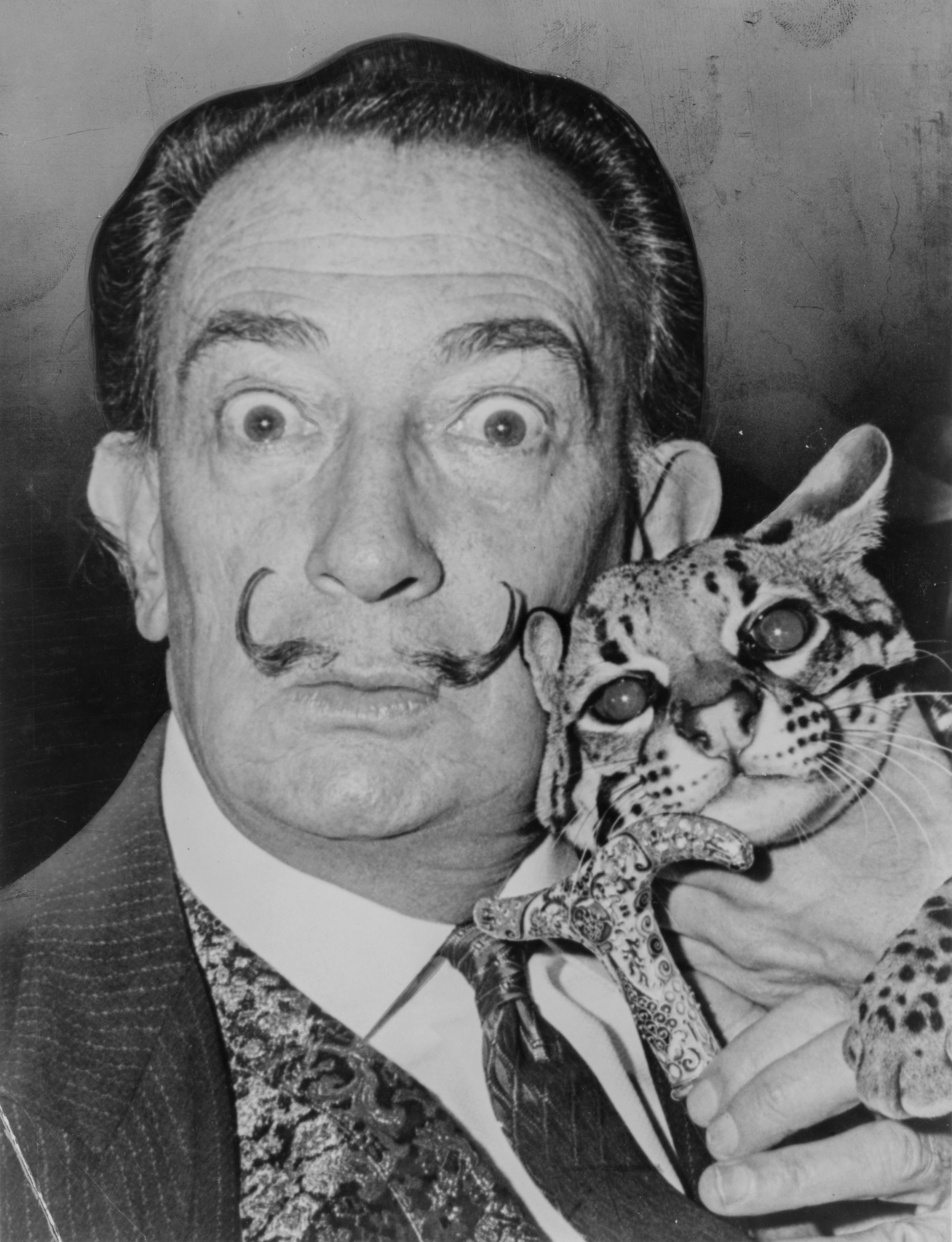 Salvador Dali, an artist, the model for my enthusiastic eye-ball look, and a holder of ocelots. (Photo by Roger Higgins, World Telegram staff photographer. No known copyright restrictions)