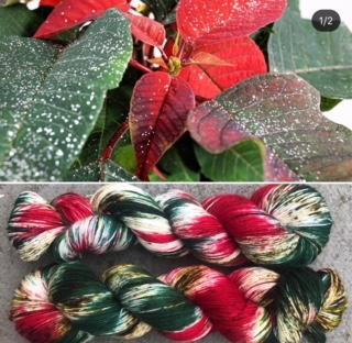 Christmas poinsettia yarn