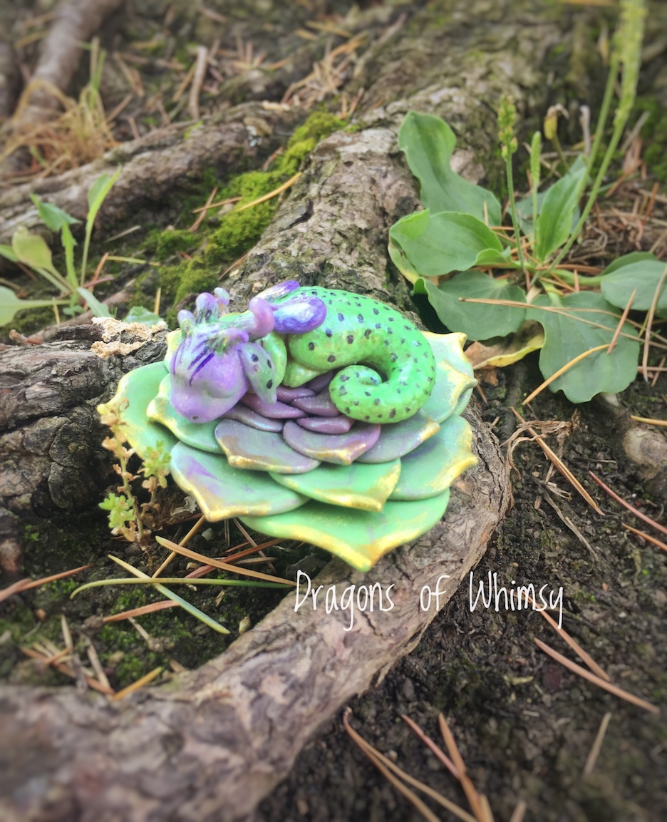 Vered of Dragons of Whimsy's sweet sleeping dragon