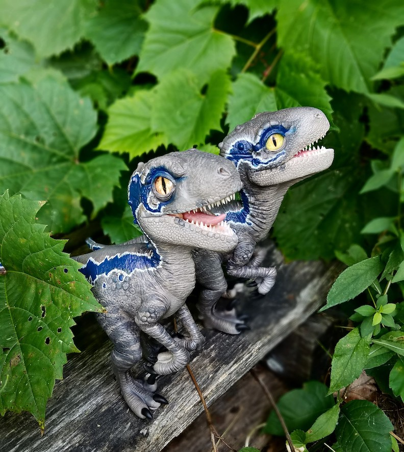 Clay Raptor Sculptures with ClayWorksbyJen