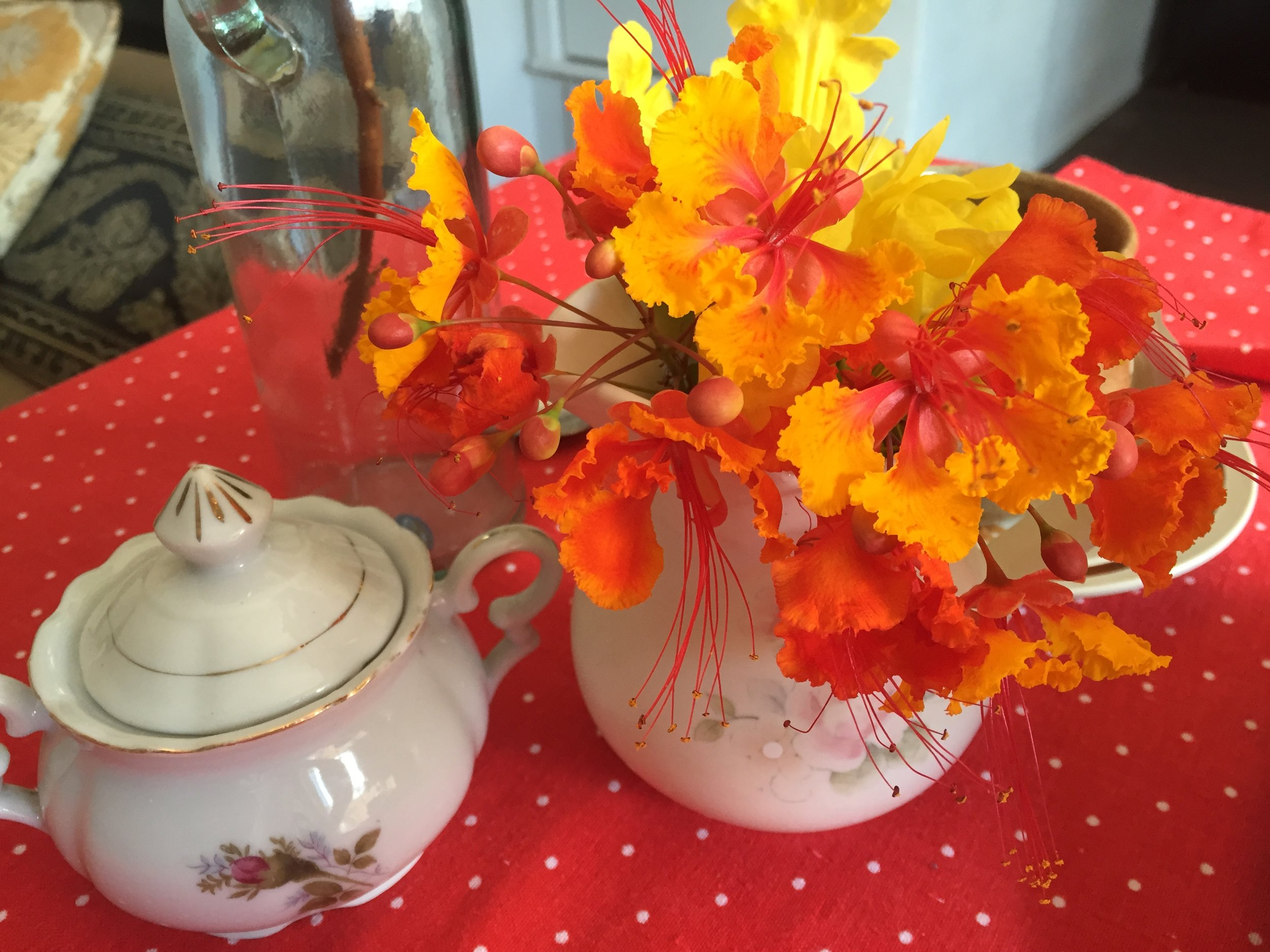 Pride of Barbados Flowers in creamer and sugar bowl