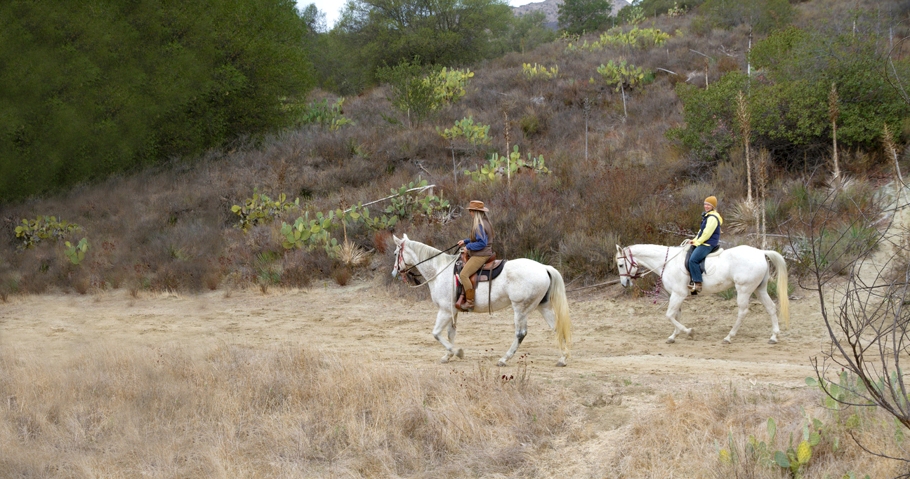 OC GO | outdoor wilderness county non-profit organization | nature, natural beauty