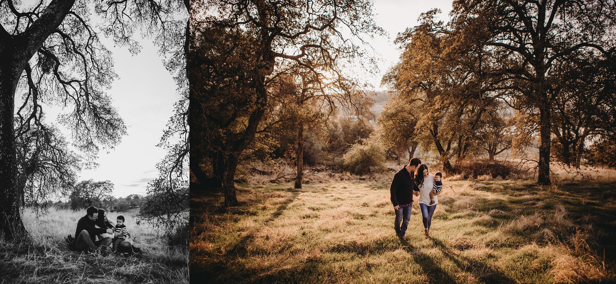 Family walking in woods, family sitting under tree, Becci Ravera Photography