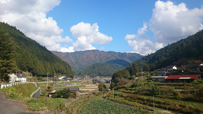 landscape-1.png